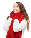Woman in sweater, scarf and mittens Stock Image