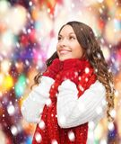 Woman in sweater, scarf and mittens Royalty Free Stock Images