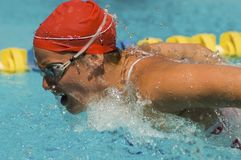 Woman swimming butterfly stroke Stock Images