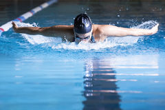 Woman swimming butterfly stroke. Female swimmer is swimming butterfly stroke in an indoor swimming pool - focus on the head Stock Photos