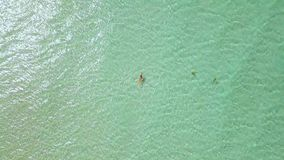 Woman swimming in crystal clear sea water drone view. Woman bathing in turquoise sea water on paradise beach aerial view. From flying drone stock footage
