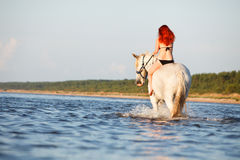 Woman swimming with horse Stock Image