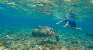 Woman swimming with sea turtle. Tropical island vacation sport activity. Royalty Free Stock Photo