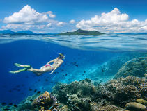 Woman swims around a coral reef. Surrounded by a multitude of fish on the background Islands. North Sulawesi, Indonesia royalty free stock images
