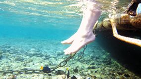 Woman is swinging her legs in tropical sea water. Woman is swinging her legs in sea water. Underwater shot of tropical reef and fish resort beach. Recreational stock footage