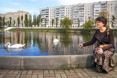 Woman swith swans Stock Images
