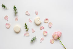 Woman table with rose and macaroons in pastel color top view mockup Royalty Free Stock Image