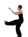 Woman tai chi chuan tadjiquan posture pose position Stock Image
