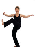 Woman tai chi chuan tadjiquan posture position Stock Photography