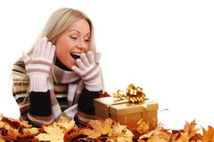Woman take autumn gift Stock Photography