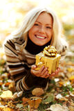 Woman take autumn gift Stock Photography