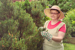 Woman take care of the garden Royalty Free Stock Images