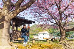 Woman take image by cellphone under sakura tree Stock Image
