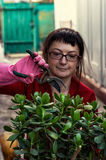 Woman takes care of indoor ornamental plants Royalty Free Stock Images