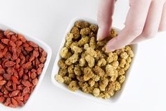 Eating Mulberries and Goji berries Stock Photography