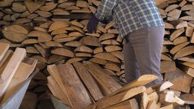 Woman takes firewood from warehouse and puts them in the cart for transportation. Caucasian mature fat woman on a ranch or in the countryside neatly puts the stock video footage