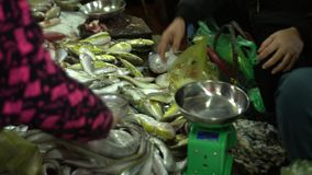 The woman takes fresh fish in a package of the buyer. Vietnam. Fresh fish on a market counter in Vietnam. On this video you can see market place on streets of stock footage