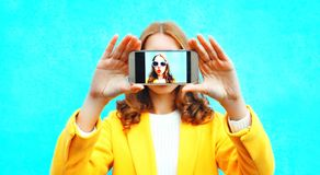 woman takes picture self portrait on smartphone on colorful blue Royalty Free Stock Photo