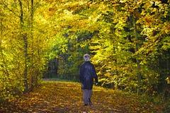 Woman takes a walk Royalty Free Stock Photos