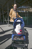 Woman takes white dog in baby buggy for a walk down Central Park in Manhattan, New York City, New York Royalty Free Stock Images
