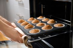 Woman taking baking tray with cupcake Stock Images