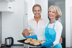 Woman Taking Baking Tray Out From Oven Royalty Free Stock Photo