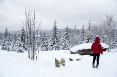 Woman taking break from cross-country skiing in Jizera Mountains Stock Images