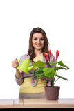 The woman taking care of plants isolated on white Royalty Free Stock Images
