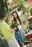 Woman Taking Flower Plant From Male Gardener Stock Photography
