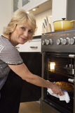 Woman Taking Food Out Of The Oven Royalty Free Stock Photography