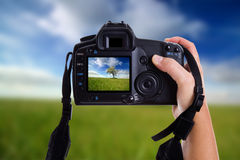 Woman taking a landscape photo Royalty Free Stock Photography