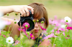 Woman taking photo. In a field of Cosmos Flowers Royalty Free Stock Photos