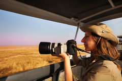 Woman taking photo aboard safari jeep at savannah Royalty Free Stock Images