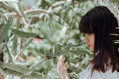 Woman Taking Photo Beside Cactus Plant royalty free stock images