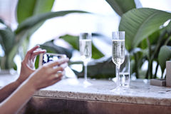 Woman taking photo of champagne glasses. Meeting in city restaurant or cafe. Houseplants near window, daylight.  Stock Photos
