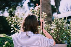 Woman Taking Photo of Green-leafed Plant Selective Focus Photography royalty free stock photos