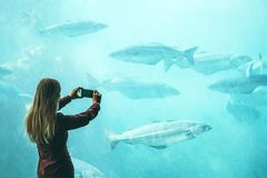 Woman taking photo by smartphone of fish in big aquarium Stock Photos
