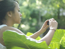 Woman Taking Photograph Of Leaves Royalty Free Stock Image