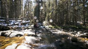 Woman taking photos by river in yosemite national park stock video