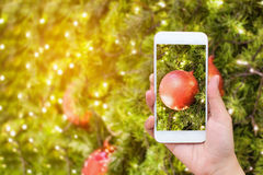 Woman taking picture of christmas decorations Royalty Free Stock Photo