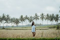 Woman taking picture for social media in rice field stock photography