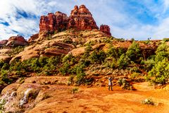 Woman taking a picture of the vegetation on Bell Rock, one of the famous red rocks between the Village of Oak Creek and Sedona. In northern Arizona`s Coconino royalty free stock images