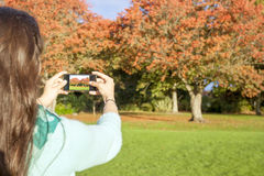 Woman taking picture stock photos