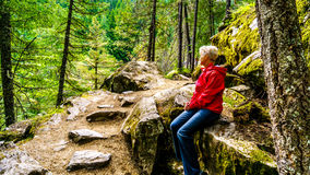 Woman taking a rest on a hike to Nairn Falls. In Nairn Falls Provincial Park between Whistler and Pemberton British Columbia, Canada Stock Image