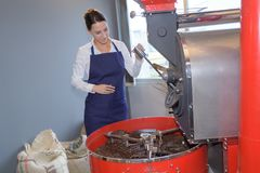 Woman taking roasted coffeebeans from roast machine. Woman taking roasted coffeebeans from the roast machine Stock Image