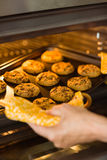 Woman taking tray of fresh cookies out of oven Stock Photography
