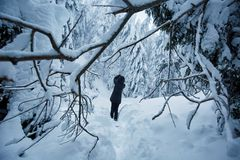 Woman taking winter photos royalty free stock photos