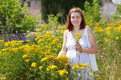Woman in tansy plant Stock Photo