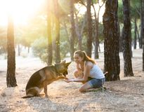Woman teaching and loving her dog royalty free stock image