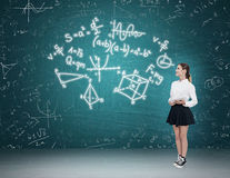 Woman teaching math Stock Photos